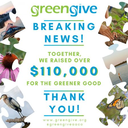 GreenGive_total