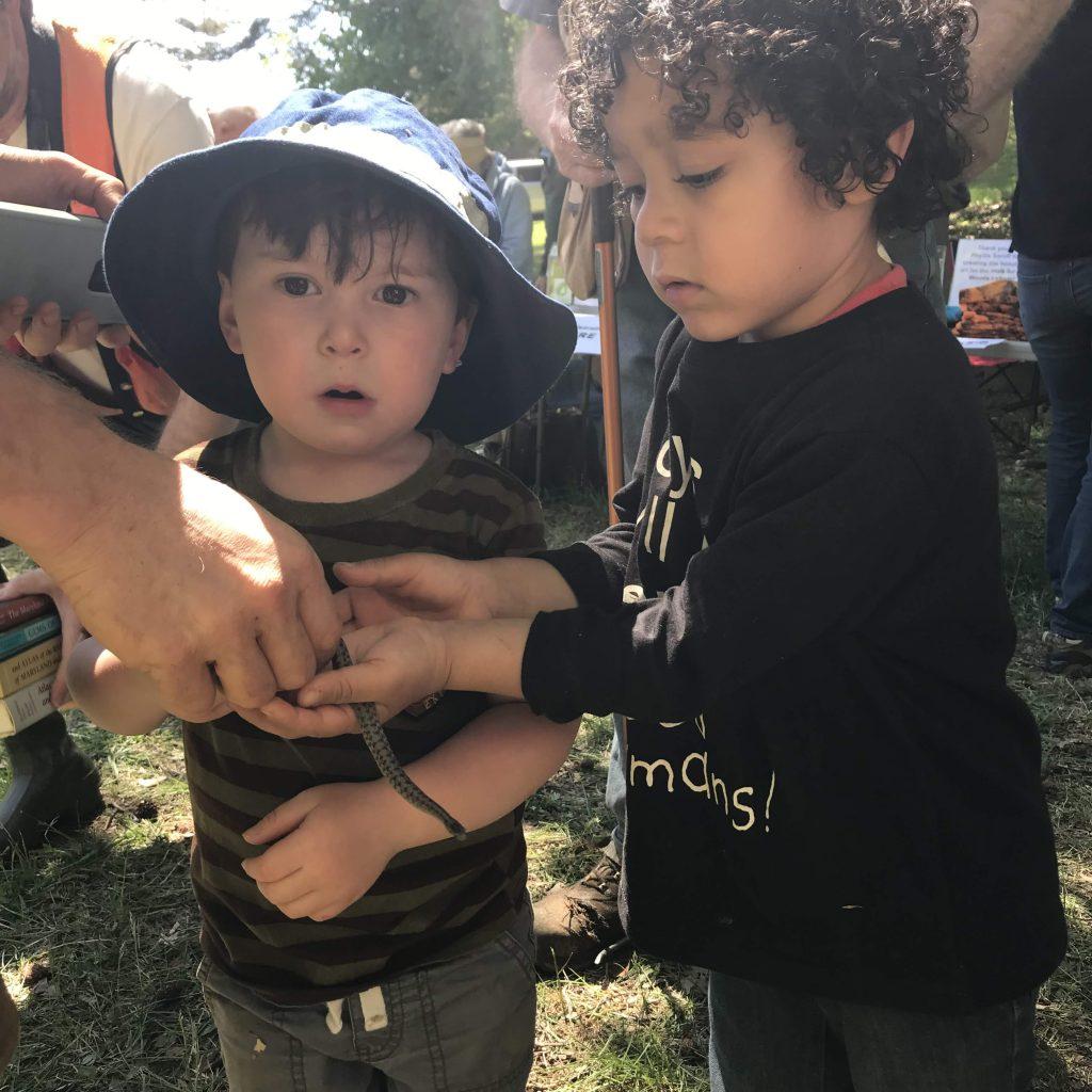 Walk_2019_kids_wildlife_EdmeeGeis