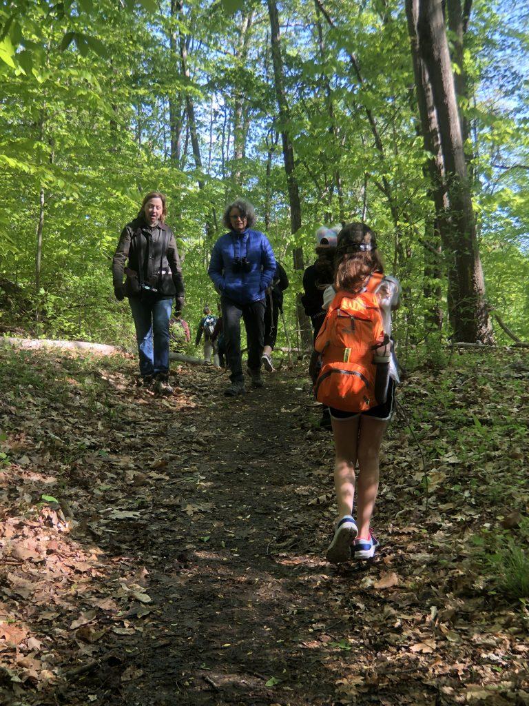 WalkfortheWoods_2019_hikers